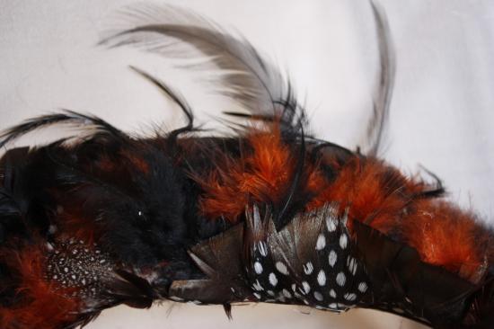 Col en plumes (Coq, faisan,oiseau du Paradis)